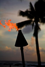 Hawaiian Torch at Sunset